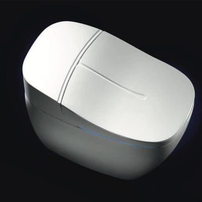 Умный электронный унитаз IT-806JD